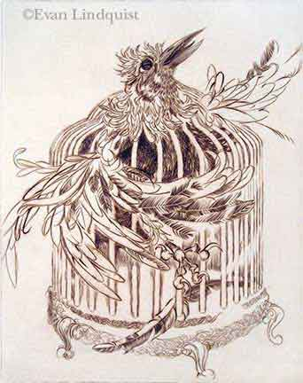 Evan Lindquist artist-printmaker, Bird Cage, copperplate engraving, fauna