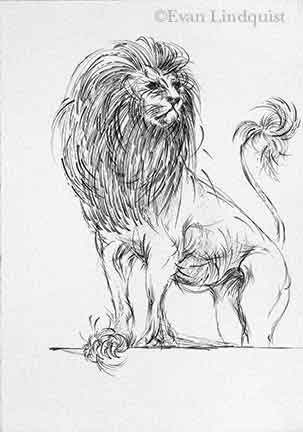 Evan Lindquist artist-printmaker, Lion, copperplate engraving, fauna