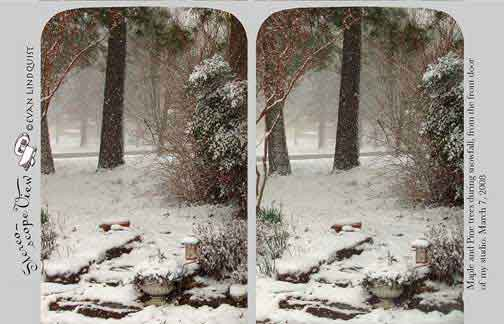 Evan Lindquist artist-printmaker, stereoview card, Snow and Maple Trees